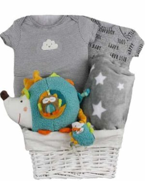 Baby Gift baskets Canada